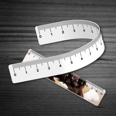 Righelli in polipropilene 30x5,5 cm